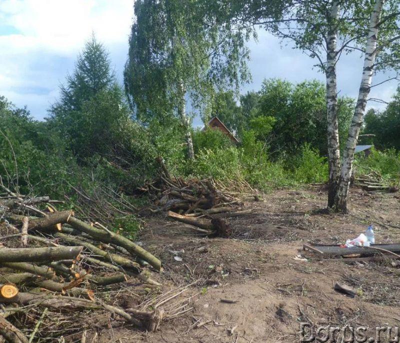 Расчистка участков. Мы расчистим ваш участок - Строительные услуги - Мы предлагаем жителям Воронежа..., фото 2