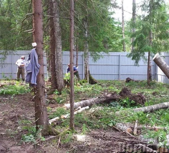 Расчистка участков. Мы расчистим ваш участок - Строительные услуги - Мы предлагаем жителям Воронежа..., фото 4