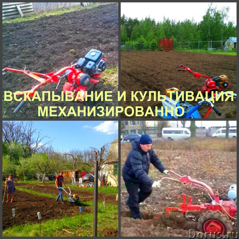 Вспашка, вскапывание и культивация земли, выравнивание участка - Прочие услуги - Вспашка, вскапывани..., фото 2